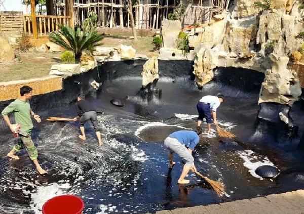 Cách chống thấm cho hồ cá Koi