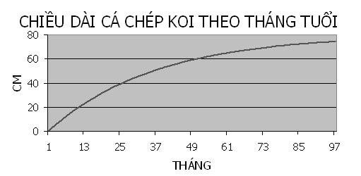 kich-thuoc-ca-Koi