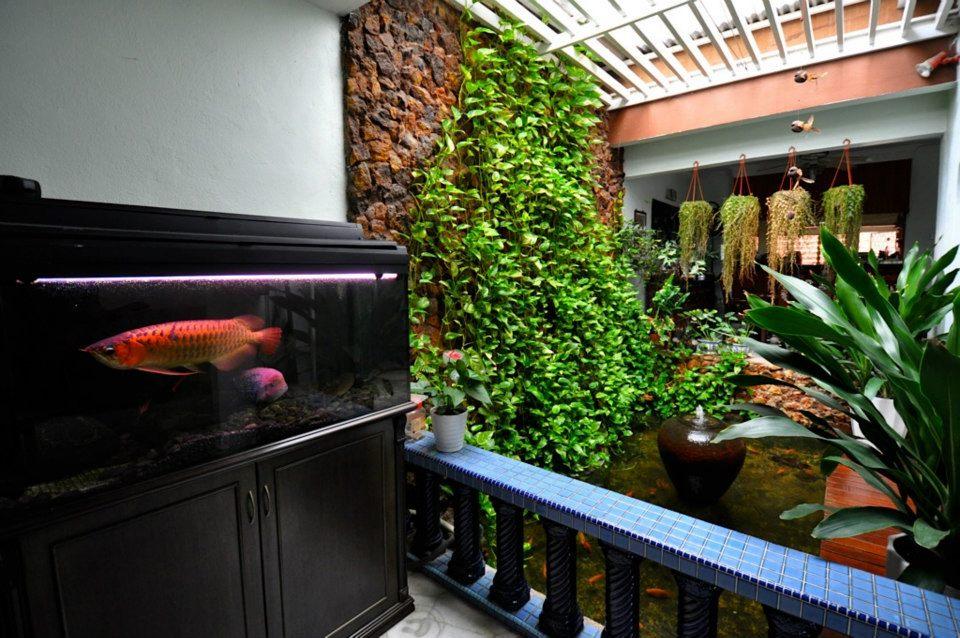 Mẫu hồ cá Koi hiện đại trong nhà 1
