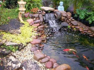 23 Mẫu hồ cá Koi đẹp từ các nước Asian 18